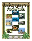 Endangered Animal Posters
