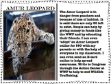 Endangered Animal Posters and Cards