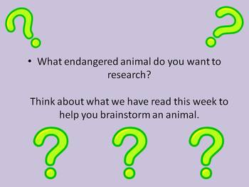 Endangered Animal Research - Poster Project for Wonders Reading Series