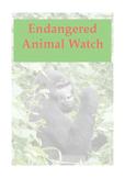 Endangered Animal Watch