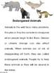 Endangered Animals Brochure Activity
