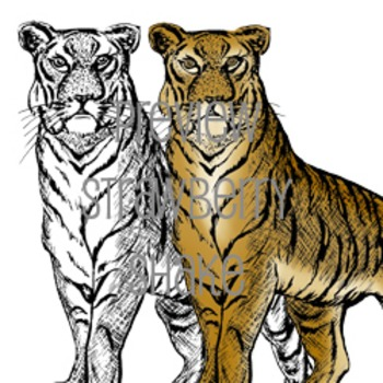 Endangered Animals Clip Art BUNDLE - SAVE 20%