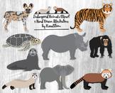 Endangered Animals Clipart - 9 Hand Drawn Wild Endangered Animal Species