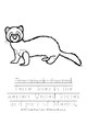 Endangered Animals Coloring Book-Level B