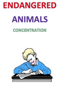 Endangered Animals Concentration