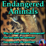 Endangered Animals - PowerPoint & Activities