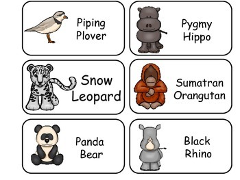 Endangered Animals Picture Word Flash Cards. Preschool flash cards for children.