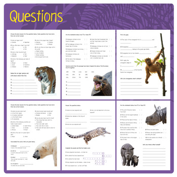 Endangered Animals (Puzzles & Fun Stuff)