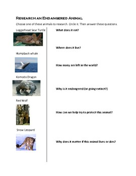 Endangered Animals Scale and Research