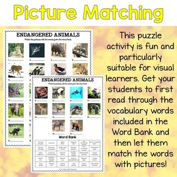 Endangered Animals Vocabulary Matching Puzzles