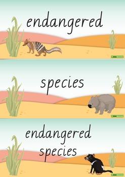Endangered Animals Word Wall Vocabulary – Australia