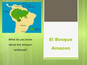 Endangered Animals of the Amazon Rainforest