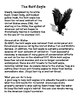Endangered Bald Eagles- Informative