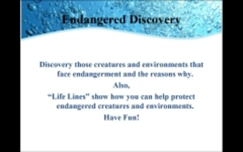 Endangered Creatures and Environment Discovery PowerPoint
