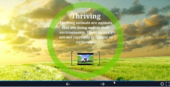 Endangered, Extinct, Threatened, and Thriving Animals Prezi