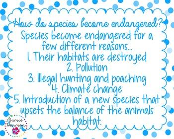 Endangered Species Chart Set