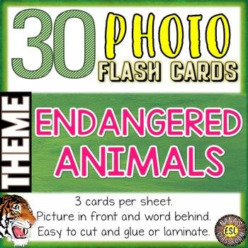 Endangered Animals Photo Flash Cards