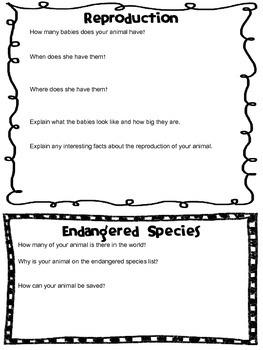 Endangered Species Report Packet