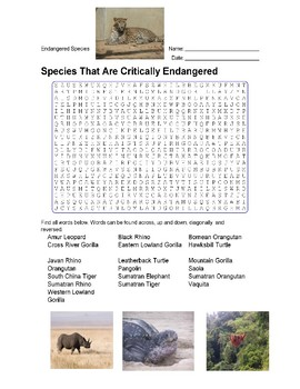 Endangered Species - Species That Are Critically Endangered.