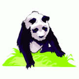 Endangered Species- Text and Exercise Sheets