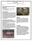 Endangered Species: The African Rhinoceros