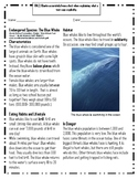 Endangered Species: The Blue Whale