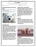 Endangered Species: The Polar Bear