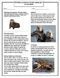 Endangered Species: The Sea Otter