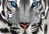 Endangered Species Watercolor Painting