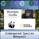 Endangered Species Webquest