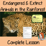 Endangered and Extinct Animals of the Rainforest  -  Complete Lesson