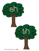 Ending Digraphs SH and TH Picture & Word Sort