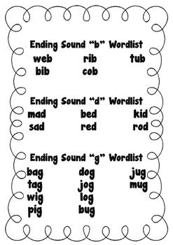Ending Sound CVC Booklet