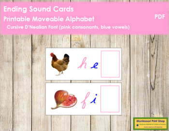 Ending Sound Cards for Printable Moveable Alphabet CURSIVE - Pink/Blue