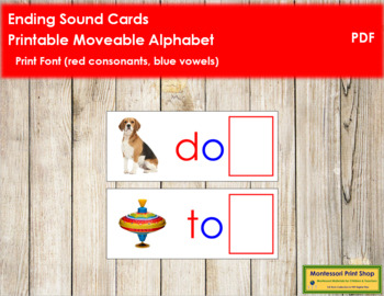 Ending Sound Cards for Printable Moveable Alphabet PRINT - Red/Blue