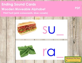 Ending Sound Cards for Wood Moveable Alphabet PRINT - Pink/Blue