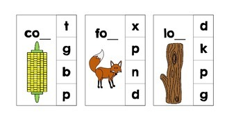 Ending Sound Clothespin Activity Cards