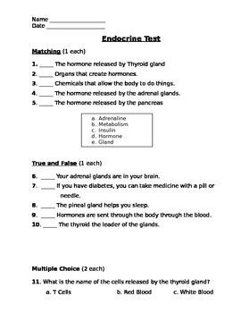 Endocrine Assessment (Test)