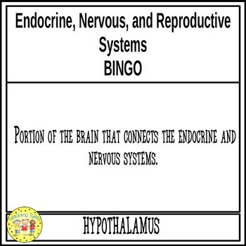 Endocrine, Nervous, and Reproductive Systems BINGO