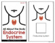 Endocrine System Adapted Books [ Level 1 and 2 ]