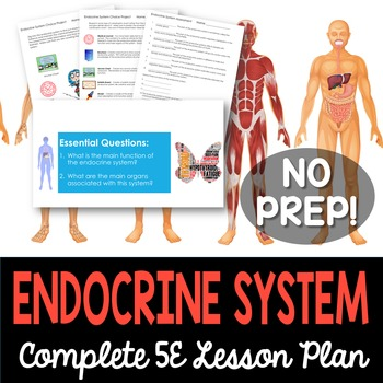 Endocrine System Complete 5E Lesson Plan