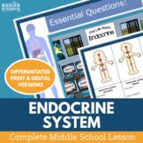 Endocrine System Complete 5E Lesson Plan