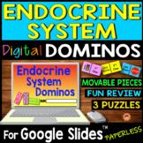 Endocrine System DIGITAL DOMINOS for Google Slides