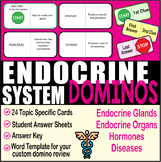 Endocrine System ~DOMINO REVIEW~ 24 Cards + Answer Sheets + Key- ANATOMY