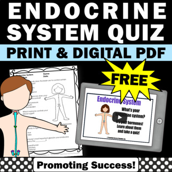 FREE Endocrine System, Human Body Systems 5th Grade