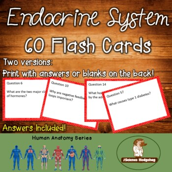 Endocrine System Flash Cards