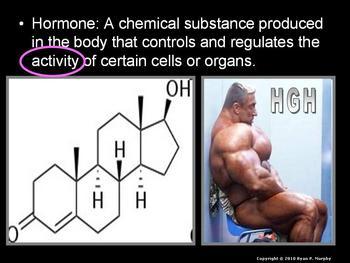 Endocrine System, Hormones, Puberty, Lesson