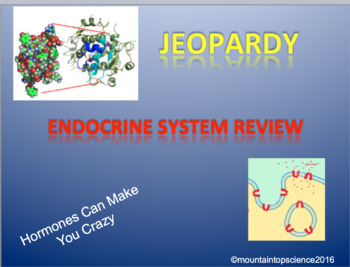 Endocrine System Jeopardy