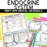 Endocrine System Nonfiction Article and Sketch Note Activity