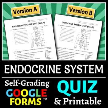 Endocrine System Quiz Worksheets Teaching Resources TpT
